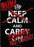 Run Zombies Coming Tin Wall Sign
