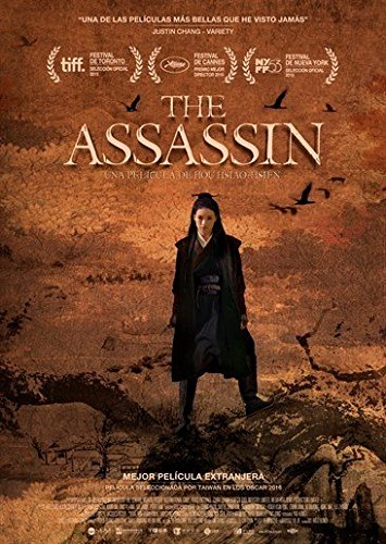 The Assassin [DVD]