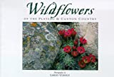 Wildflowers Of The Plateau And Canyon Country (Companion Press)