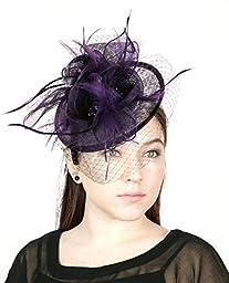 NYfashion101(TM) Cocktail Fashion Sinamay Fascinator Hat Flower Design & Net S102651-Purple