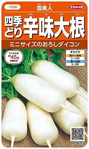 サカタのタネ 実咲野菜5031 四季どり辛味大根 雪美人 00925031