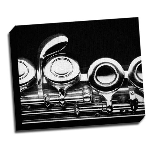 Flute Marcro Photo Canvas Wall Art