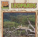 img - for Leopards (Big Cats) book / textbook / text book