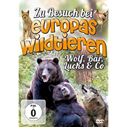 Zu Besuch Bei Europas Wildtieren