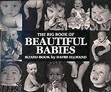 David Ellwand Big Book of Beautiful Babies Board Book