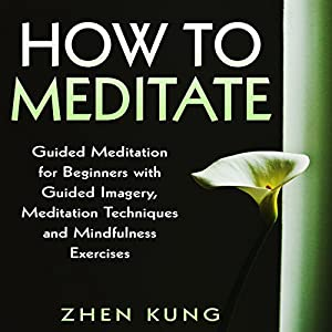 How to Meditate Audiobook