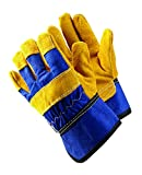 Briers gants de