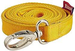 Choostix Dog Belt Flat, Medium (1 Piece) (color may vary)