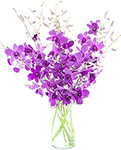 Ultimate Purple Dendrobium Orchid Bouquet (10 stems) - With Vase