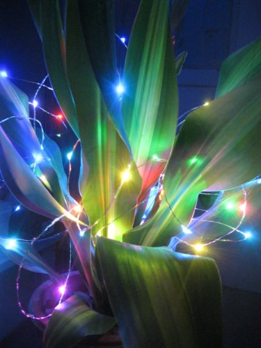 33Ft/10M 12V Dc Green Red Blue Purple Pink Cool White Warm White Yellow Rgb Led Sliver Wire Light Xmas Light,With 100 Individual Leds,+12V Dc Power Adaptor,Decorate For Christmas,Wedding ,Halloween Etc.. (Rgb)