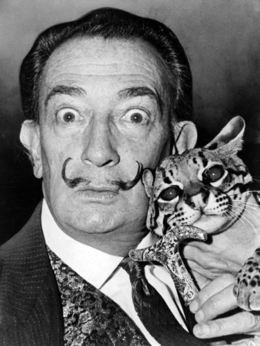 Salvador Dalí 1965 Poster Photo Famous Artists Posters Photos 11x14 (Salvador Dali Pictures compare prices)