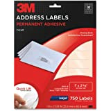 3M Permanent Adhesive Address Labels, 1 x 2.62 Inches, Clear, 750 per Pack (3500-B)