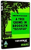 A Tree Grows In Brooklyn packshot