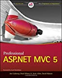 img - for Professional ASP.NET MVC 5 book / textbook / text book