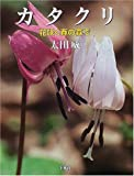 カタクリ—花咲く春の森で