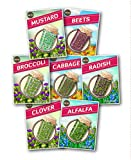 NON-GMO Sprouting Seed Set - 7 Varieties by Zziggysgal