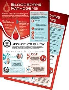 11x17 bloodborne pathogens posters posters prints - Bloodborne download ...