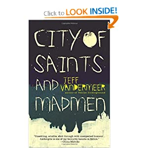 City of Saints and Madmen by Jeff Vandermeer