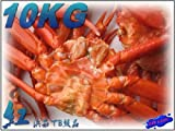 値下げしました!! 紅ずわい蟹B-10kg(冷凍) ランキングお取り寄せ