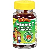 L'il Critters Gummy Immune C Plus Zinc & Echinacea, Dietary Supplement for Kids, 60-Count Bottles (Pack of 4)