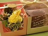 プチギフト・焼き菓子3種ギフトセットB ランキングお取り寄せ