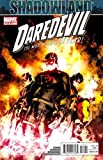 img - for Daredevil #512 book / textbook / text book