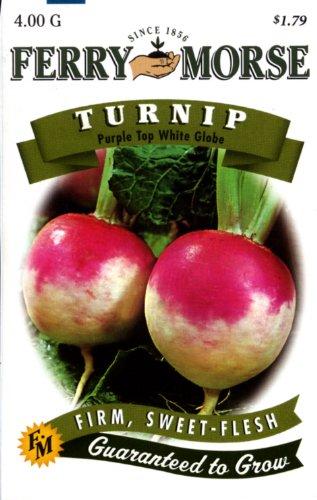 Ferry-Morse Turnip Purple Top White Globe Seeds