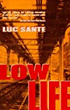 Low Life: Lures and Snares of Old New York (0679738762) by Luc Sante