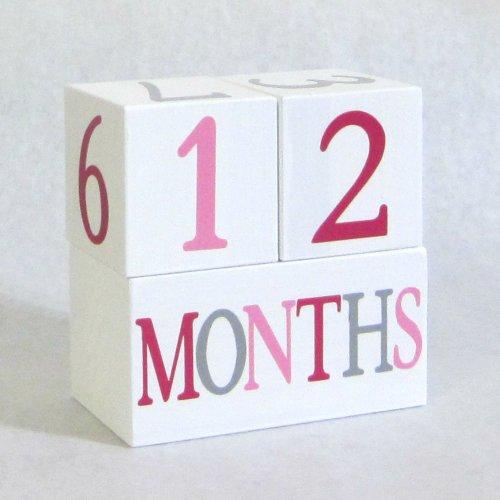 Baby Age Blocks: Shower Gift, Photo Prop & Nursery Decoration - Little Lady Bug Age Blocks front-176328