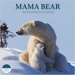 Bo Bear Travels The World