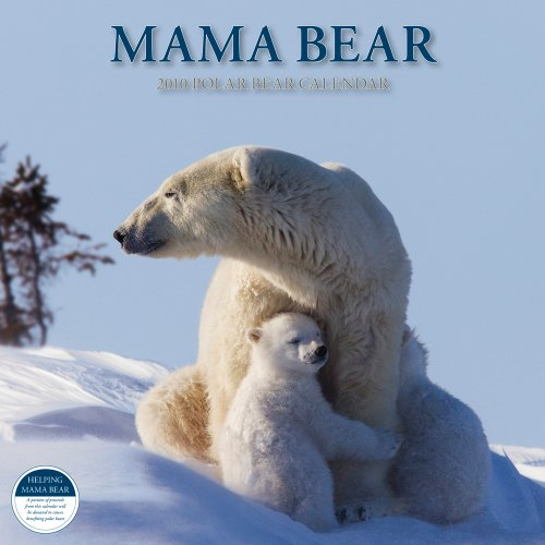 Mama Bear Polar Bear 2010 Calendar