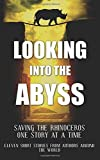 img - for Looking into the Abyss: Saving the Rhinoceros one story at a time book / textbook / text book