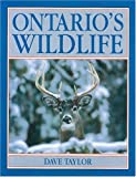 Ontario's Wildlife