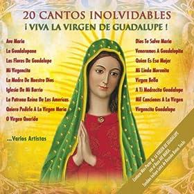 Amazon.com: 20 Cantos Inolvidables- Viva La Virgen De Guadalupe