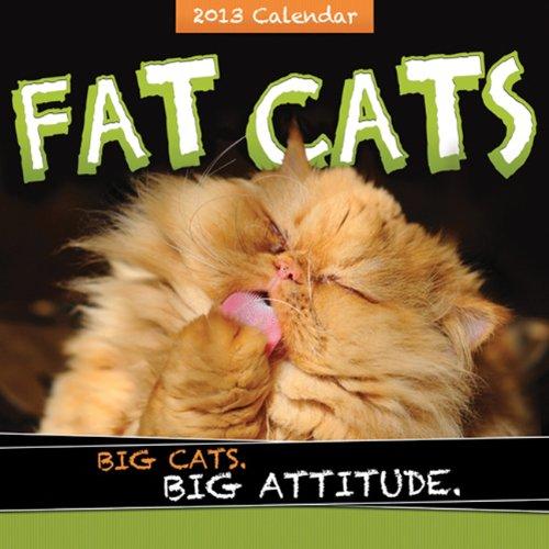 2013 Fat Cats wall calendar: Big cats. Big attitude.