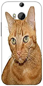 Snoogg Cat Designer Protective Back Case Cover For Htc One M8