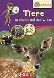Naturdetektive: Tiere im Wald & auf der Wiese: Wissen und