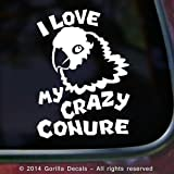I LOVE MY CRAZY CONURE Parrot Bird Parrots Vinyl Decal Sticker Aviary Door Wall Sign WHITE