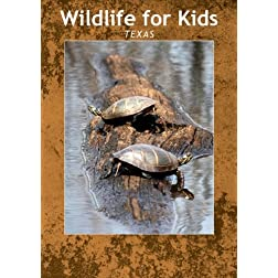 Wildlife for Kids