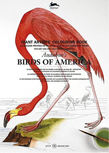 Audubon: Birds of America (Giant Artists' Colouring Books) (Birds Of America Coloring Book compare prices)