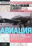 クルスク航空戦〈上〉史上最大の戦車戦―オリョール・クルスク上空の防衛 北部戦区 (独ソ戦車戦シリーズ)