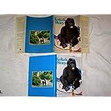 Koko's Story (Scholastic)
