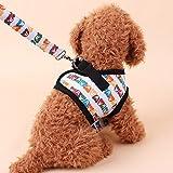 KINLO ハーネス&リードセット 散歩 が楽しくなる選べる カラフルくま柄 胸あて式 犬用リード 小型犬 介護 ハーネス ソフト 軽量 クッションメッシュ 首輪 胴輪 おでかけ 安心安全 丈夫ペット用品 L サイズ
