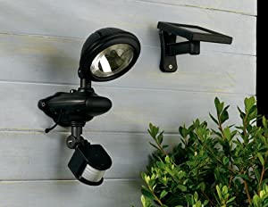Solar Powered Solo Security Light
