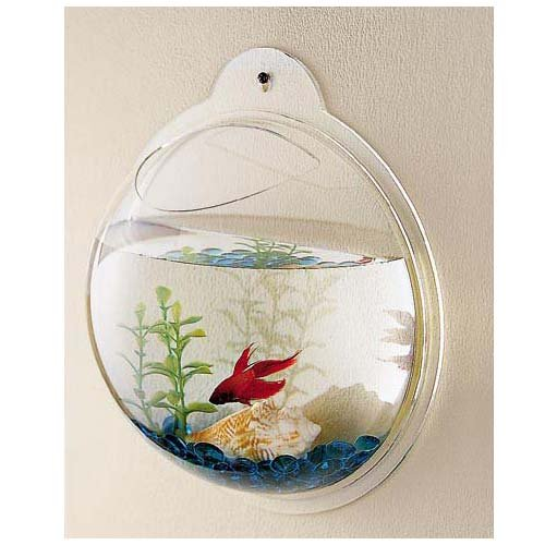 new betta fish tank aquarium bowl globe wall hanging