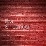 The Biggest Lie   Iliza Shlesinger