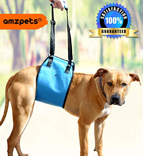 Lifting Harness By AMZpets - Large. Helps Dogs Stand Up, Walk, Climb Stairs, Get into Trucks. Great for Car Ramps. Lift sling is Best Alternative to Dog Wheelchair. RECOMMENDED BY VETERINARIANS (Lifting Dog Harness compare prices)