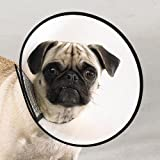 "Dog Elizabethan Collar X-Small 8"" For Fast Healing"