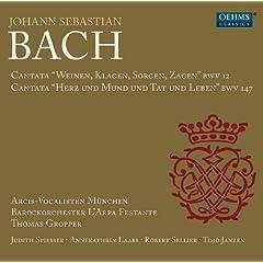 Weinen, Klagen, Sorgen, Zagen, BWV 12: Recitative: Wir mussen durch viel Trubsal (Alto)