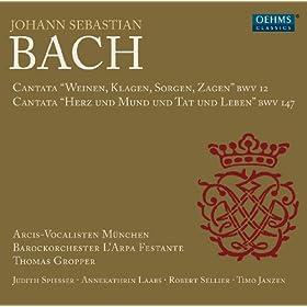 Herz und Mund und Tat und Leben, BWV 147: Recitative: Verstockung kann Gewaltige verblenden (Bass)